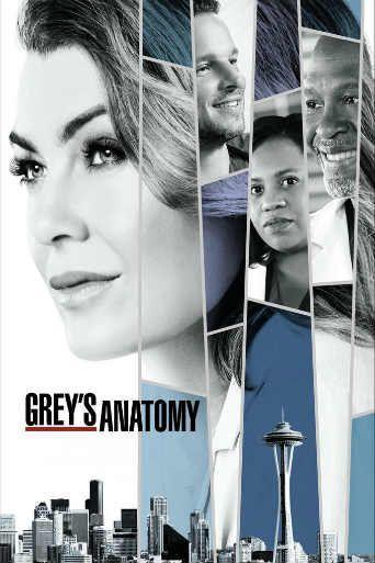 Anatomia De Grey Grey S Anatomy Temporada 14 Capitulo 8