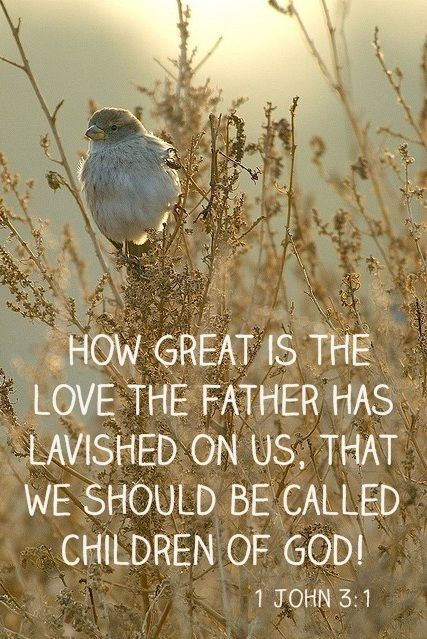 How great is the love the father has lavished on us, that we should be called Children of God ~ 1 John 3:1