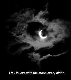 I fall in love with the moon and the wolf every night Me enamoro de la luna y EL lobo todas las noches