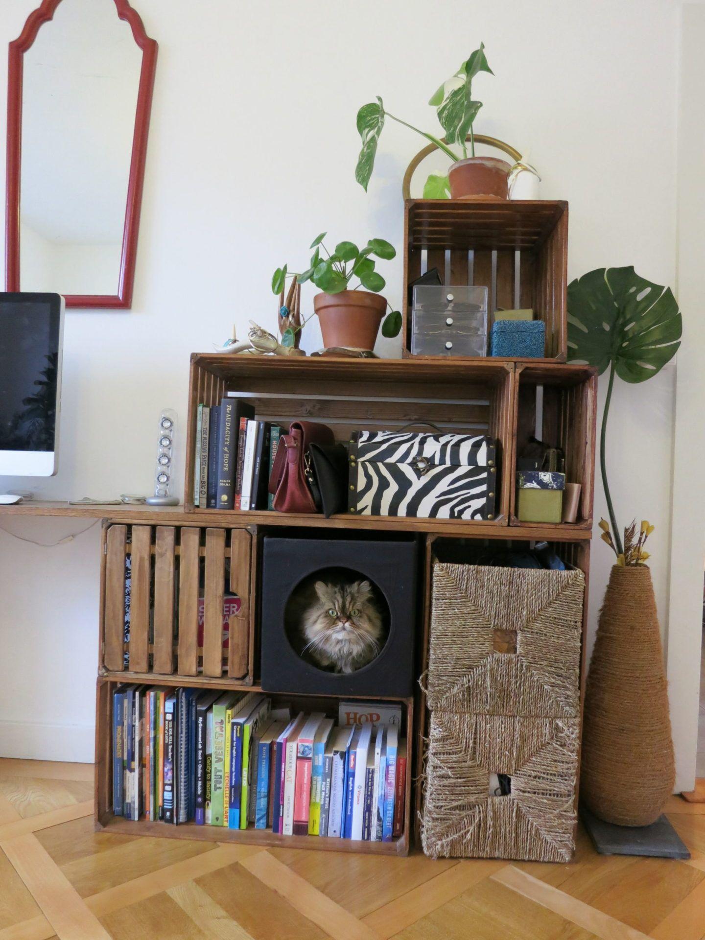 Ikea Lurvig Haul Meow Lifestyle Kallax Ikea Ikea Shelving Unit Cat Furniture Diy