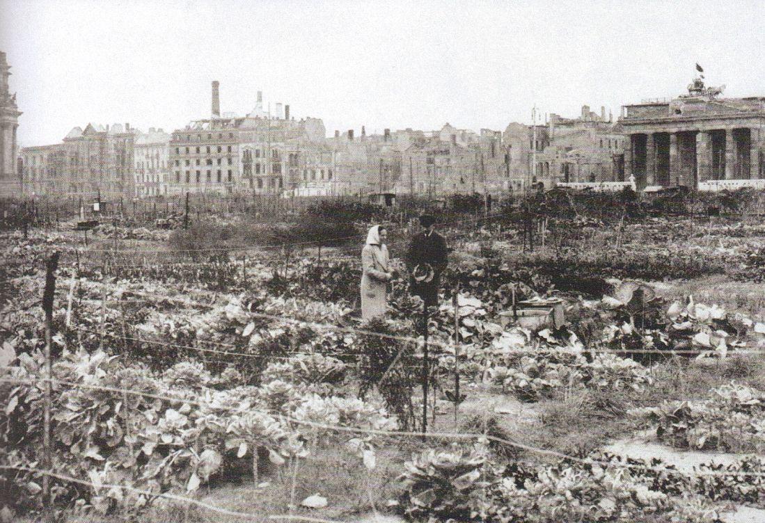 Berlin Brandenburger Tor Uberlebenswille 1947 Historische Bilder Historisch Bilder
