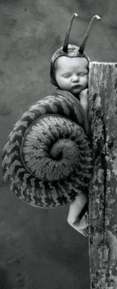 Julia Snail by Anne Geddes (cropped and rotated). °
