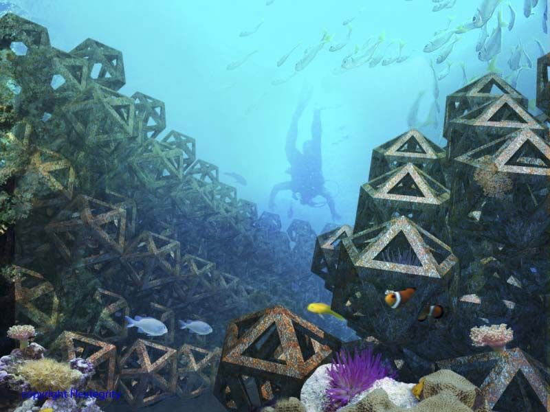 Artificial Reef Law Office Design Law Office Design