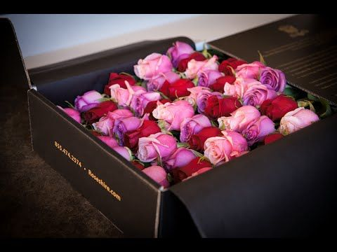 Roses Delivery Roses Delivery London Roses Delivery Sydney Valentines Flowers Roses Only Flowers Bouquet Gift
