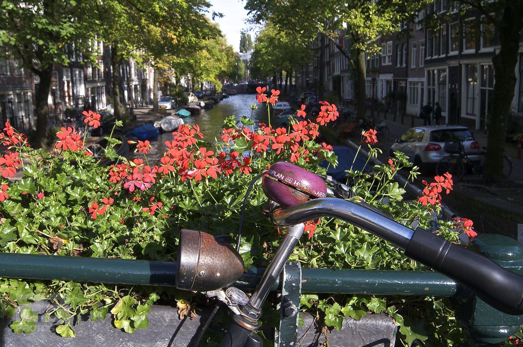 Bikes and Flowers Egelantiersgracht photo | 23 Photos Of Amsterdam