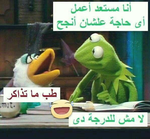 Pin By Alaa Bahget On Puns Funny Cute Dark Humour Fun Quotes Funny Funny Comments Funny Laugh