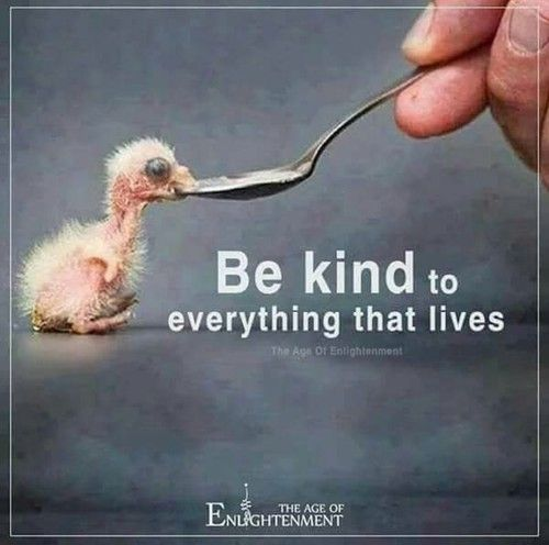 be kind shared by OneInfinity on We Heart It