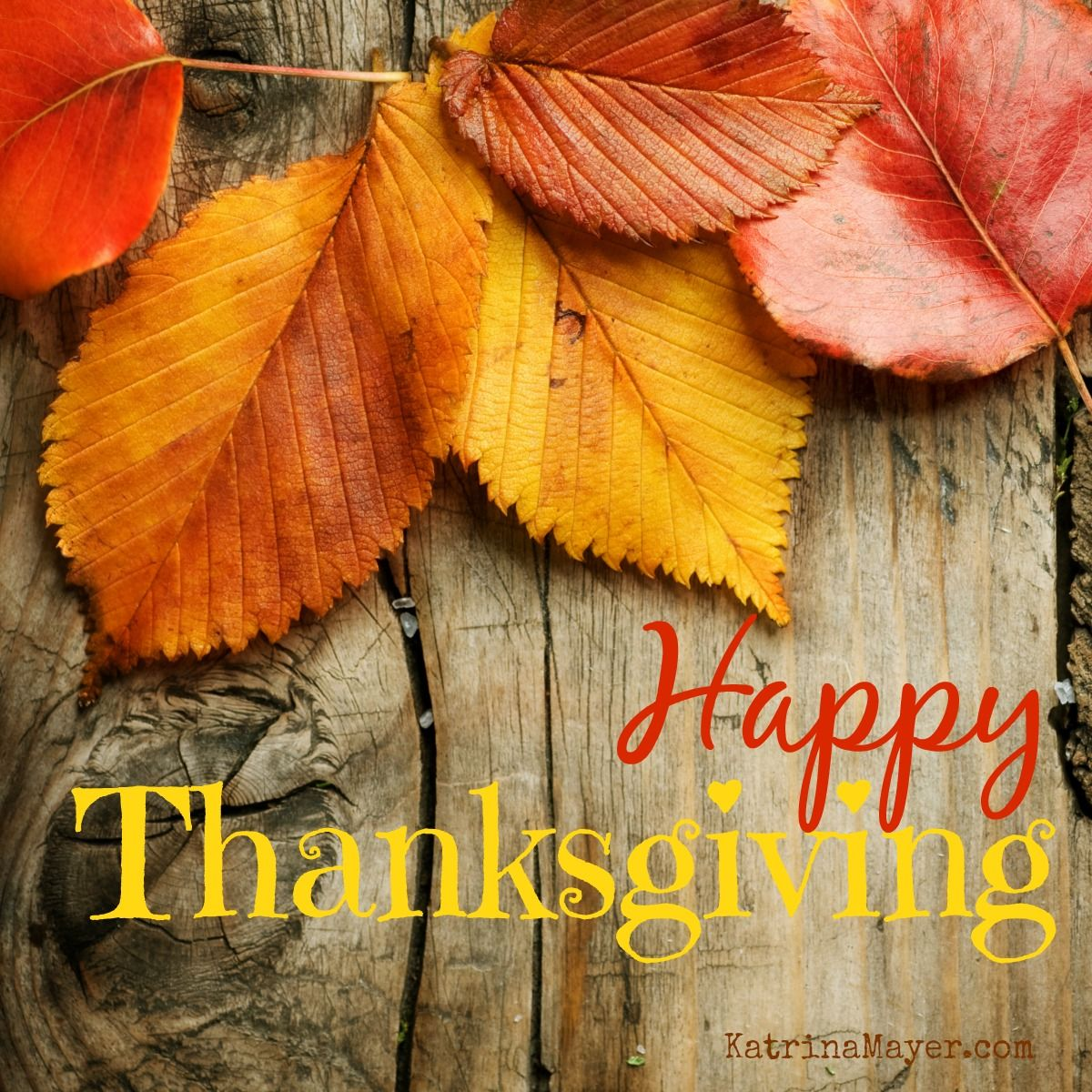 Deep Thanksgiving Quotes: Happy Thanksgiving! We Wish All Our Friends, Contributors