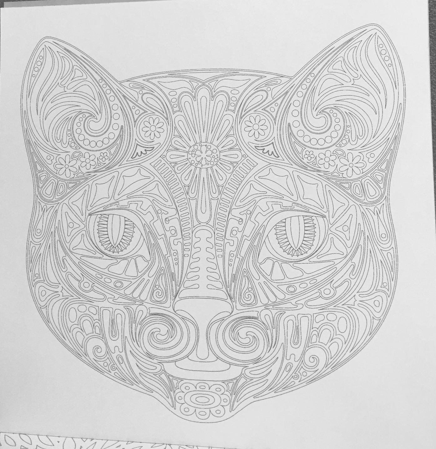 Amazon Cats 70 Designs To Help You De Stress Coloring