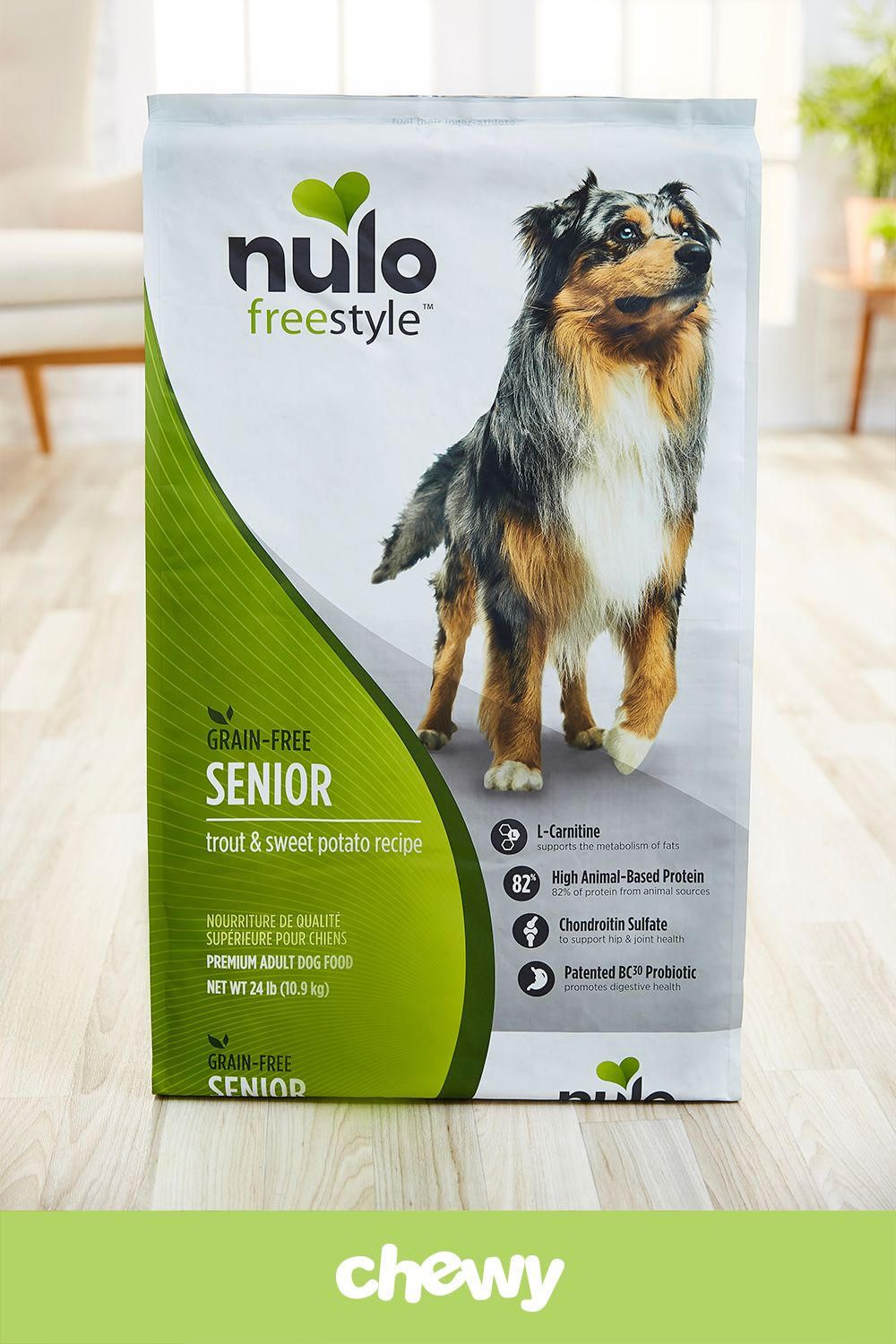 Treat Your Senior Dog To A Superior Nutrition Plan That Keeps Them
