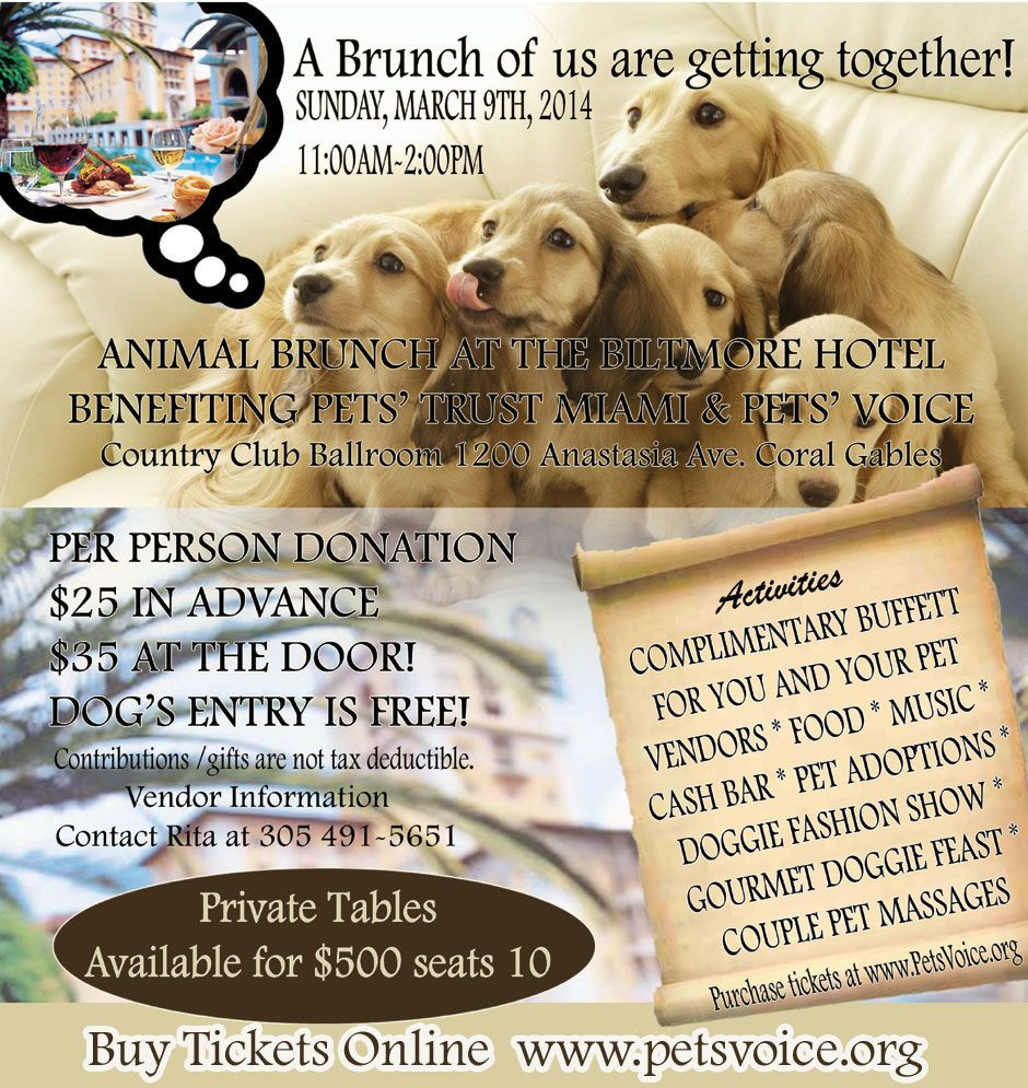 JOIN ZEN PET SPA IN THE ANIMAL BRUNCH AT THE BILTMORE