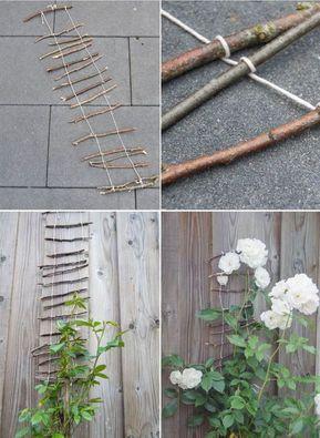 Photo of Costruisci aiuti per l'arrampicata fai-da-te per le piante in giardino