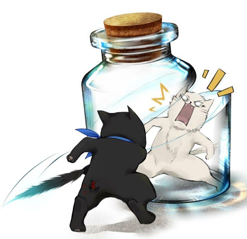 Gintoki and Katsura cats - Gintama | Gintama | Pinterest | Cat and ...