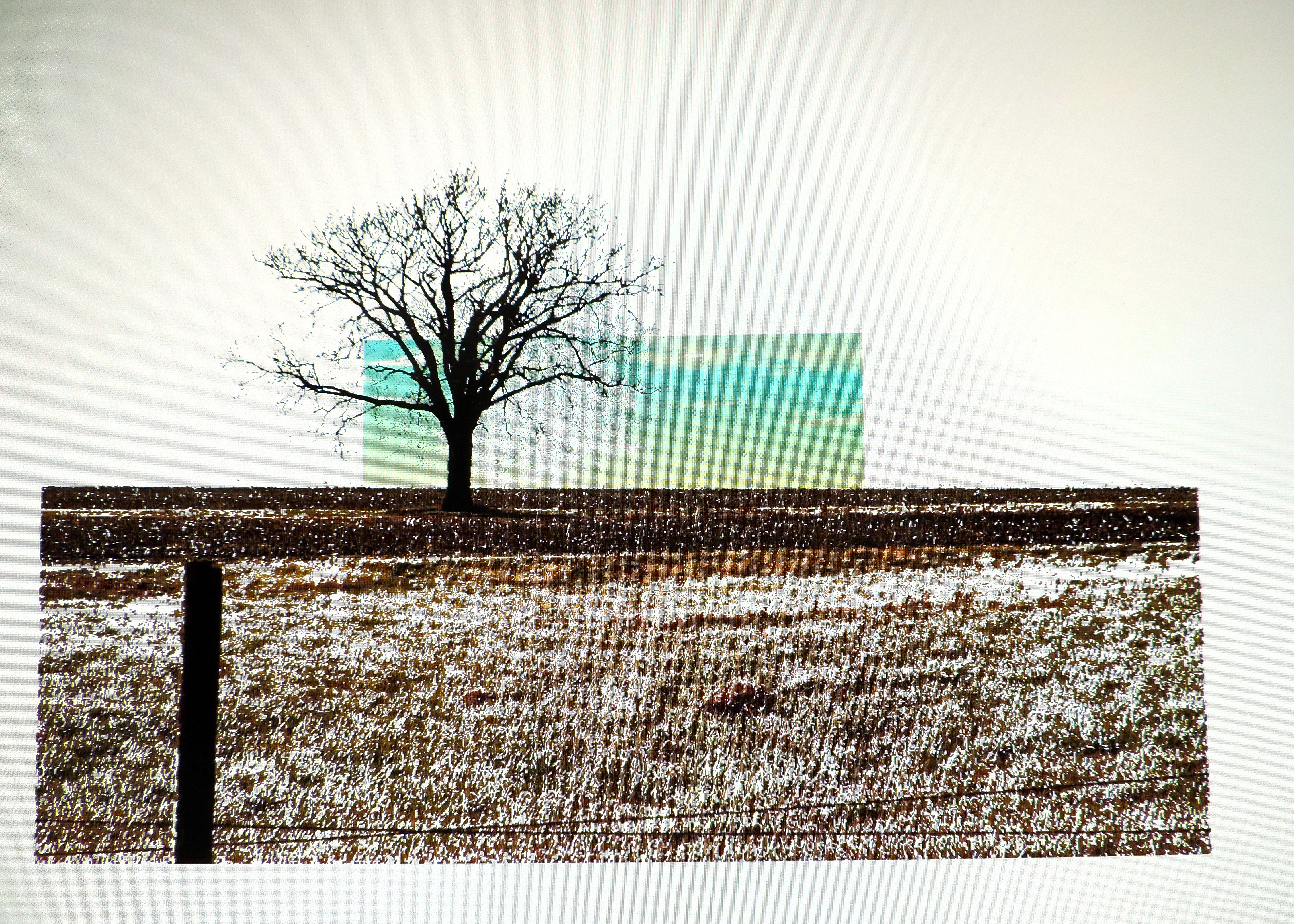 Field Tree