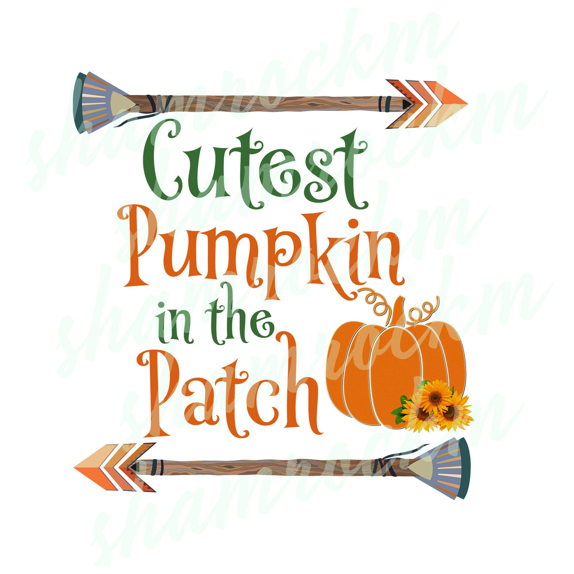 Cutest Pumpkin In The Patch With Arrows Png Images With Etsy Cute Pumpkin Patches Transparent Background