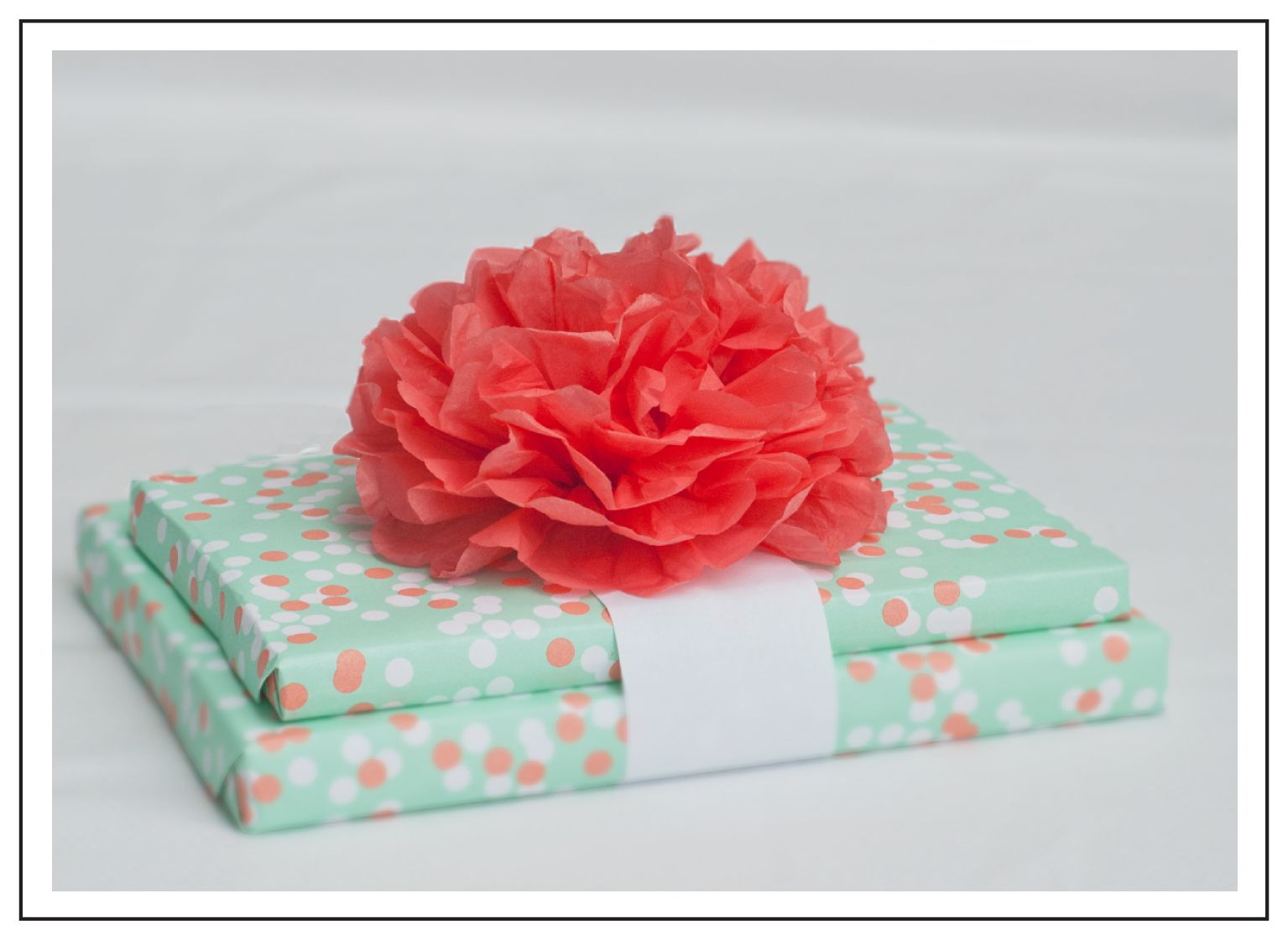 Ideas For Wrapping Wedding Gifts: Mint Green With Red Paper Tissue Carnation