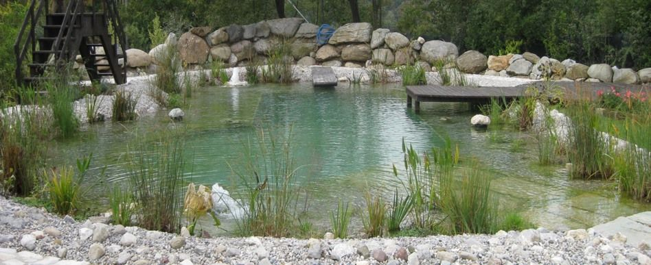 Building a natural swimming pool build a natural swimming pond we built over 200 ponds and - The pond house nature above all ...