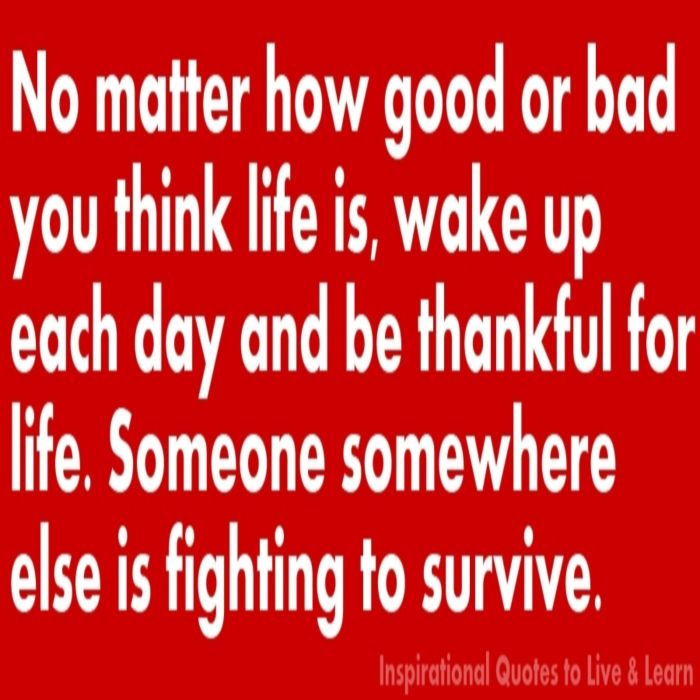 Visit The 'Improve Your Life' Store At Inspirational