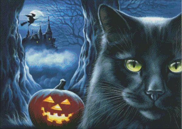 Black Cat Print Night Breeze by I Garmashova