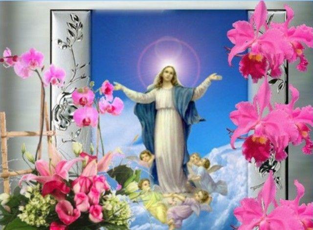Images De La Vierge Marie Pour 2016 La Tres Sainte Vierge Marie Et