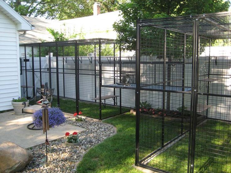 Outdoor Cat House Cat Enclosures Attached To House