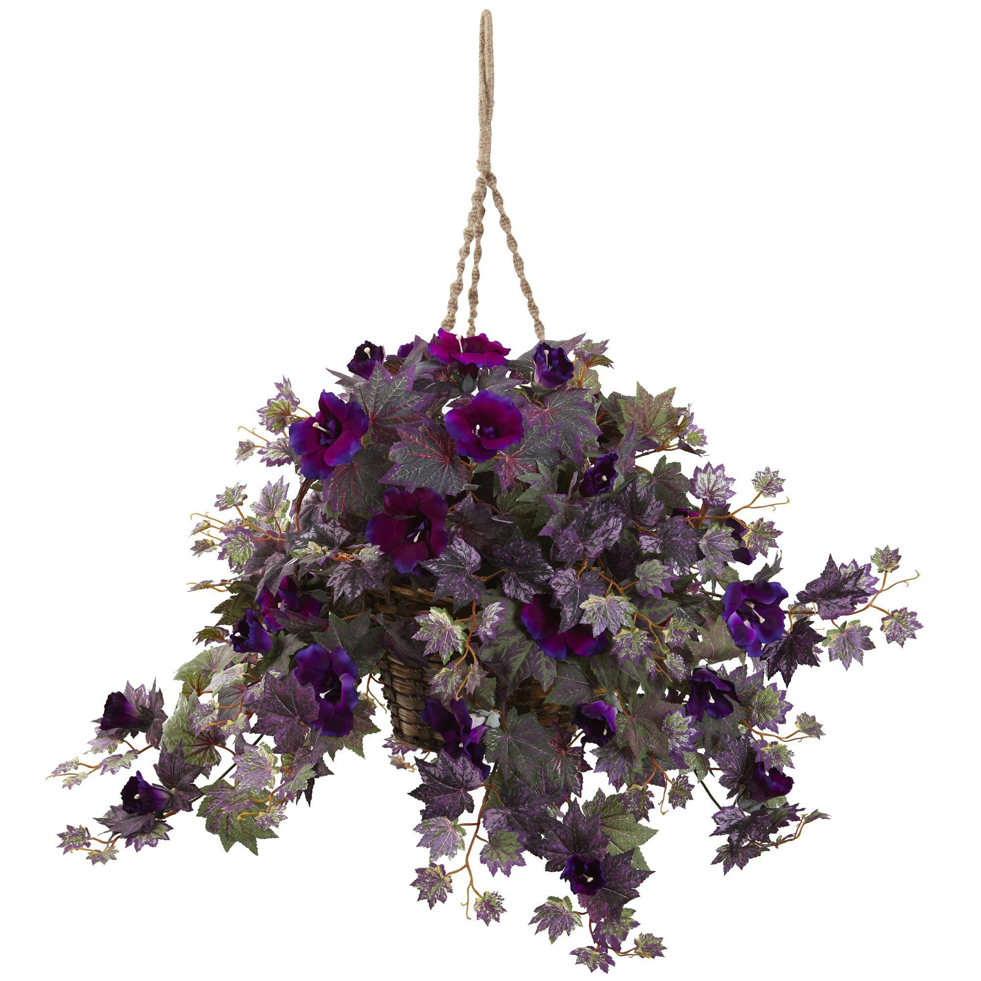 18 H Morning Glory Hanging Basket 18