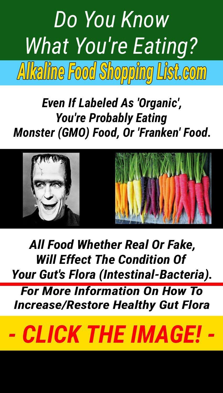 Alkaline diet grocery shopping list for vegans alkaline
