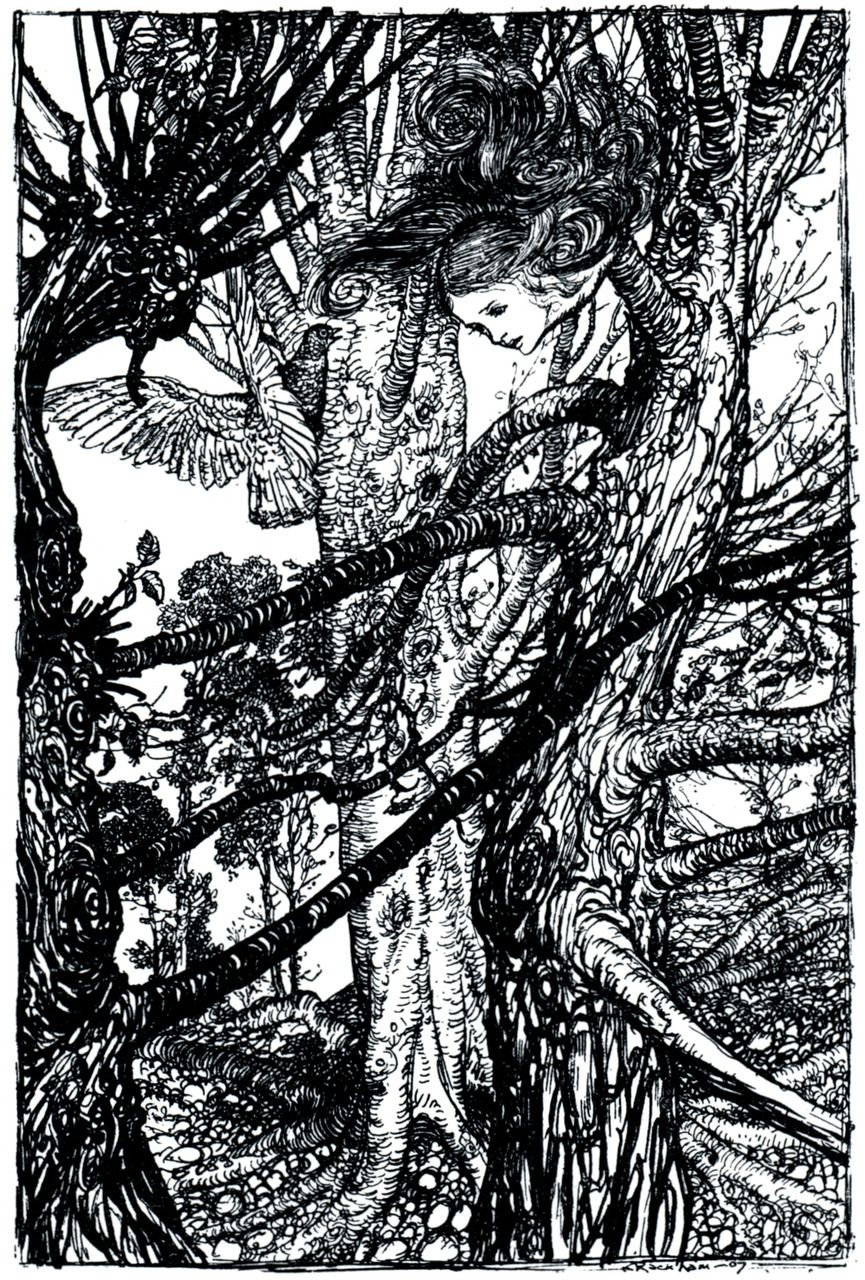 Arthur Rackham's illustration for Alice's Adventures in Wonderland by Lewis Carroll