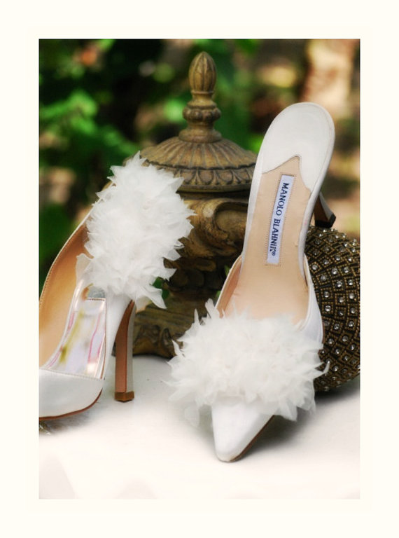 Shoe Clips White Ivory Champagne Teal Red Black