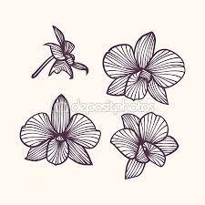 r sultat de recherche d 39 images pour dessin orchid e. Black Bedroom Furniture Sets. Home Design Ideas
