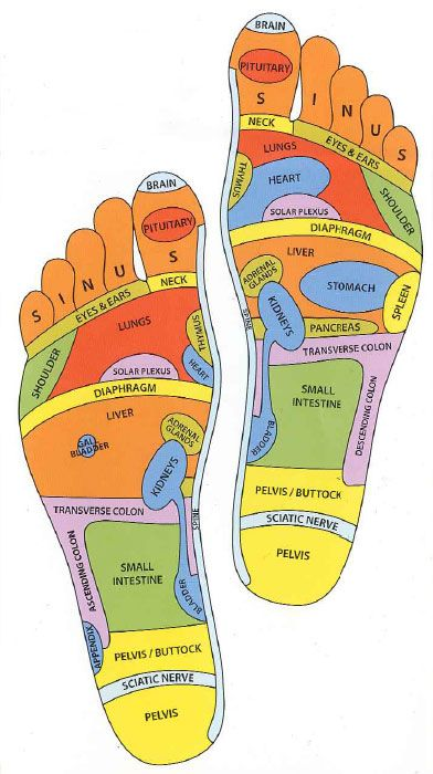 FOOT MASSAGE CHART - Massage points to stimulate body organs etc ...