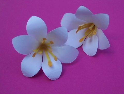 Blumen aus Papier basteln - Lilie Flowers - crafty Pinterest - blumen basteln