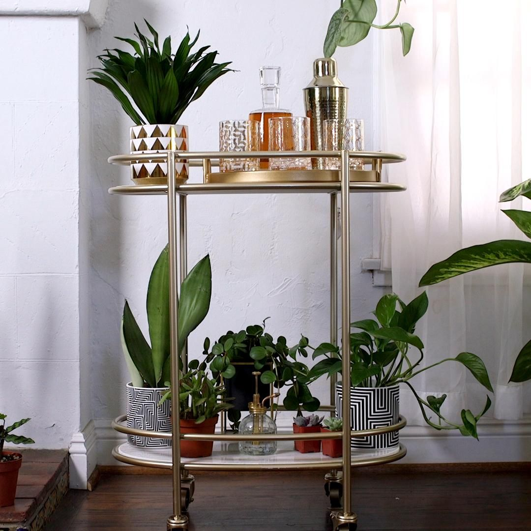 Photo of Bar Cart Garden