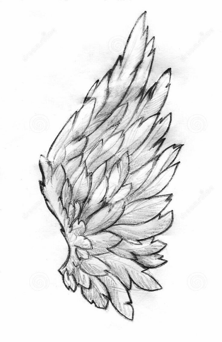 Photo of Tattoo wings