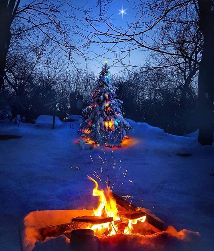Image result for christmas campfire