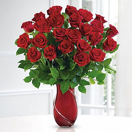 5 most popular flowers to give on valentine's day | popular, Ideas