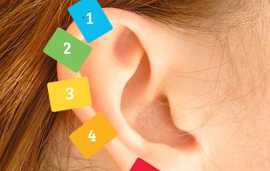 فائدة وضع ملقط الغسيل على الأذن شبكة ابو نواف Stud Earrings Drop Earrings Earrings