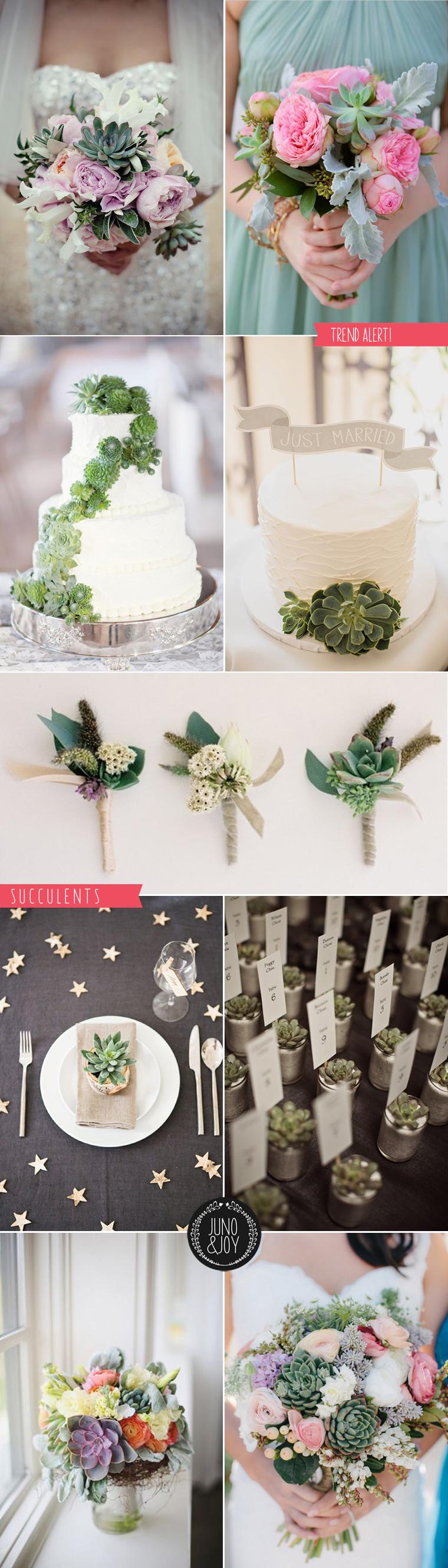 LOVE a succulent! Stylish Succulents Wedding bouquets