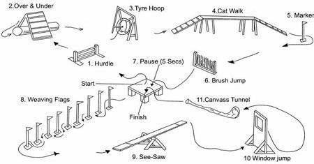 Types Of Backyard Dog Equipment · Agility Course ...
