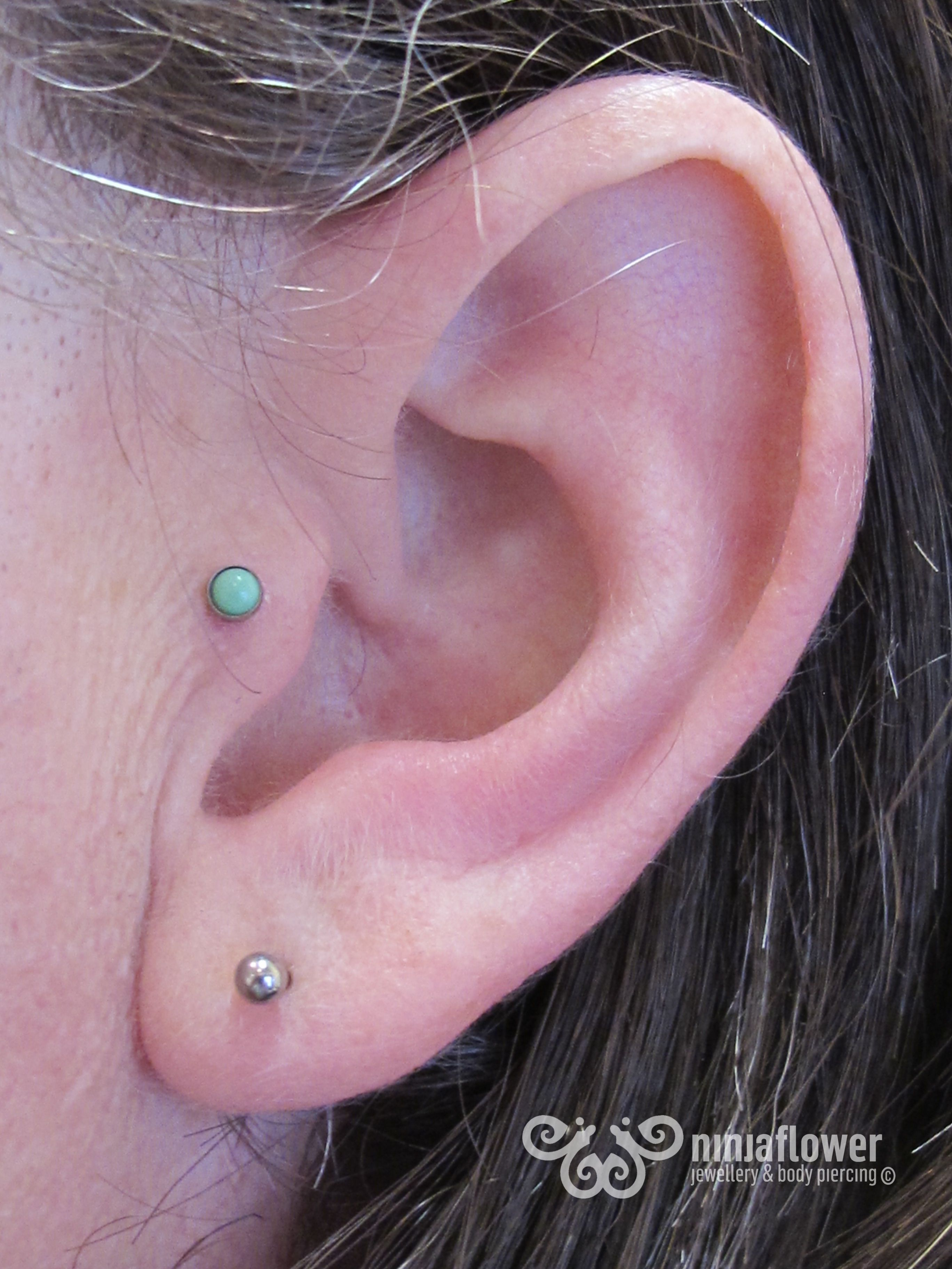 Tragus piercing with turquoise Tragus Pinterest