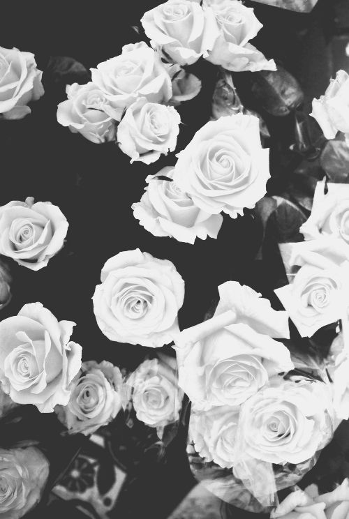 Black And White Flowers Wall Covering Background Lock Screen Lissida White Flower Wallpaper White Wallpaper For Iphone Lock Screen Wallpaper Iphone