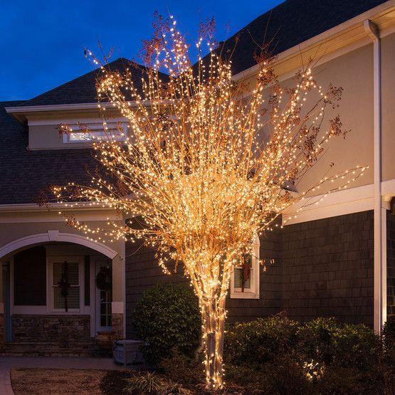 "100 Clear Christmas Tree Mini Lights, 4"" Spacing, Green"