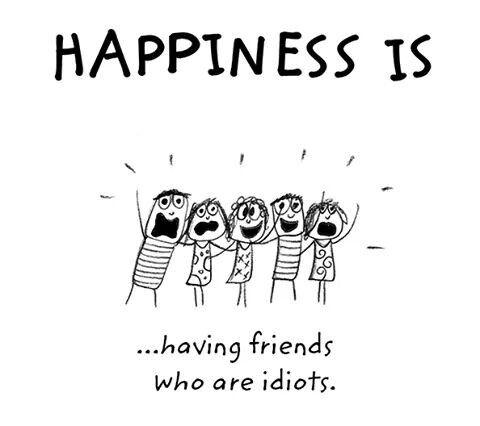 Superior My Idiot Friends. Photo
