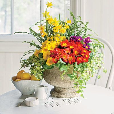 Revisit a ClassicIndoor Container Gardening IdeasFlowers