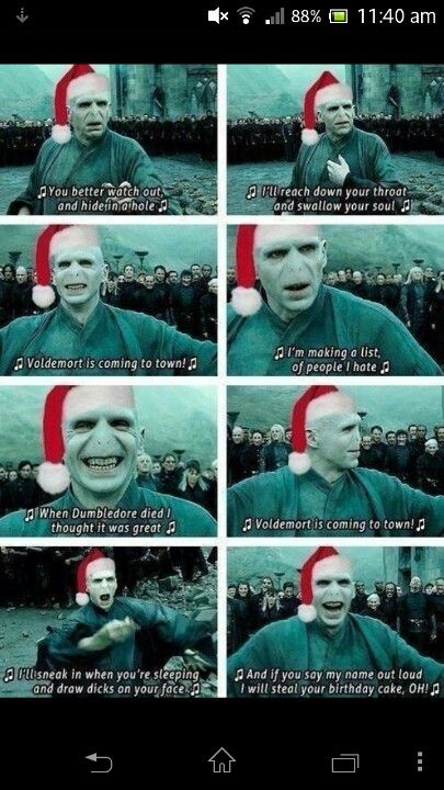 Oh My God Voldemort And Christmas Conbined Could Life Get Better Harry Potter Memes Hilarious Harry Potter Song Harry Potter Jokes