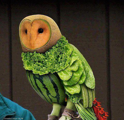 Watermelon #owl sculpture