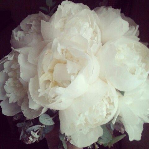 Bouquet di peonie (by Marina Michetti )