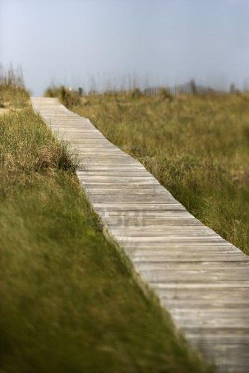 access path to beach on Bald Head Island, NC