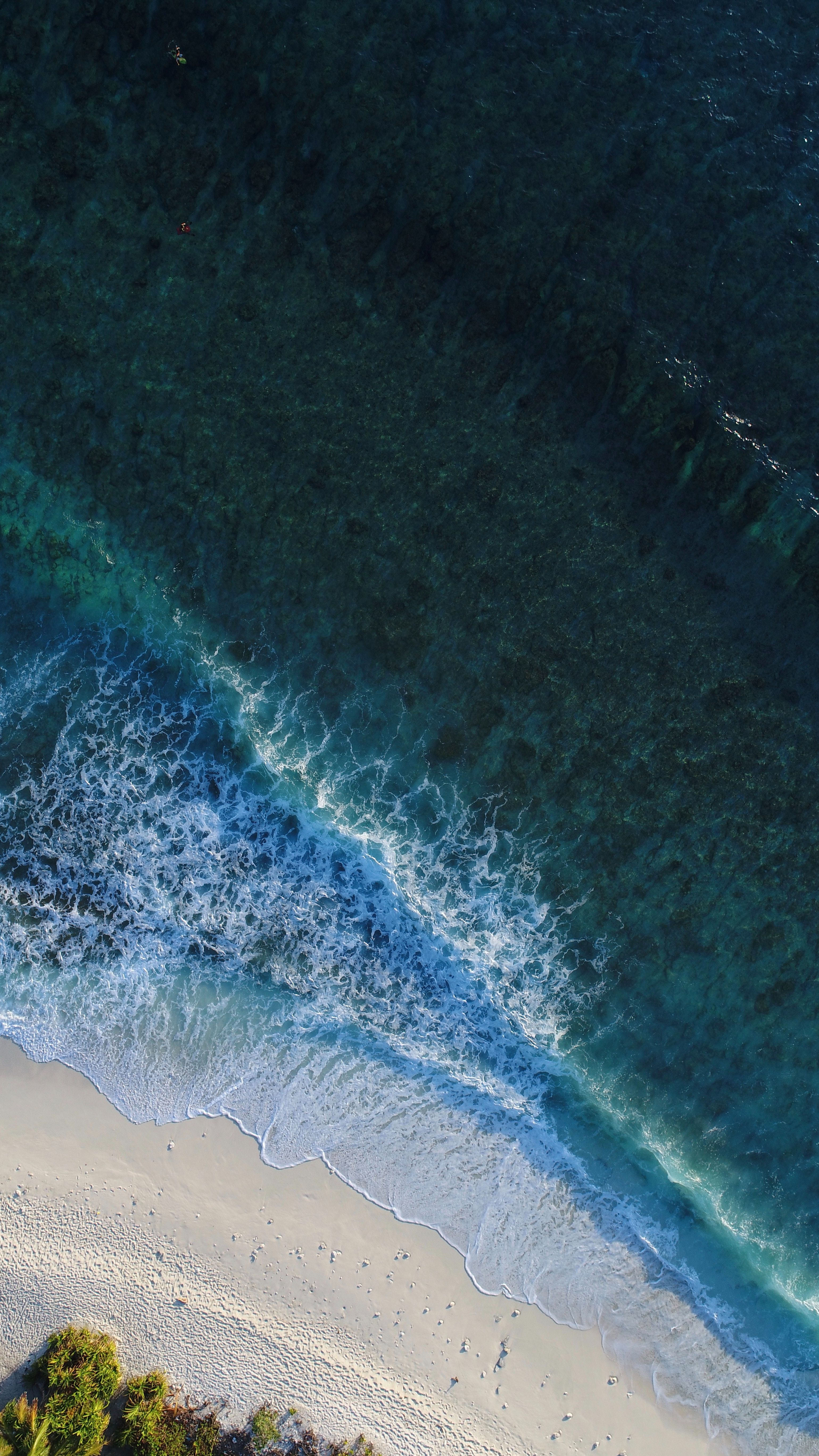 Aerial view of a maldives beach   Paradise islands in 2019 ...