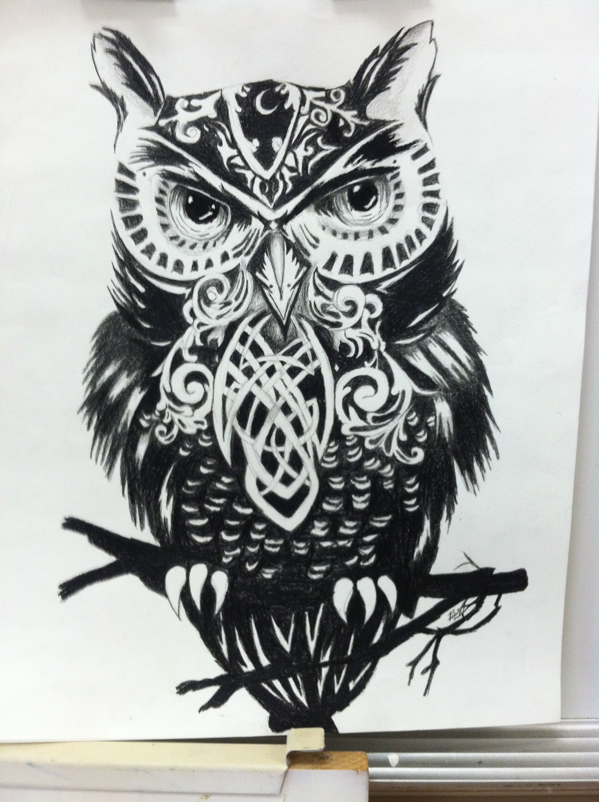 owl in color pencil snow zentangle owls pinterest owl
